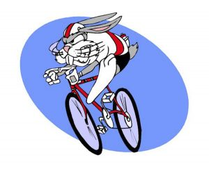 Crazy Rabbit On A Bicycle